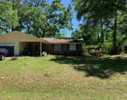 4505 Zonker, Tallahassee image