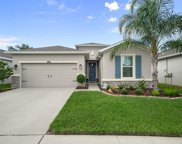 10438 Scenic Hollow Drive, Riverview image