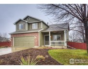 2131 Wheat Berry Ct, Erie image