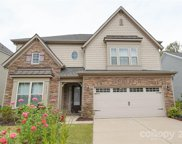 13716 Laughing Gull  Drive, Charlotte image