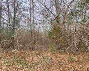335 Deer Trail Ln, Woodruff image