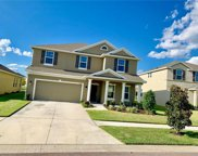 10546 Park Meadowbrooke Drive, Riverview image