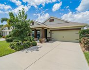 6517 Nestall Court, Apollo Beach image