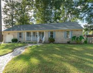 1003 Weeping Willow Drive, South Chesapeake image