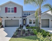 17923 Woodland View Drive, Lutz image