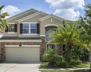 10776 Pictorial Park Drive, Tampa image