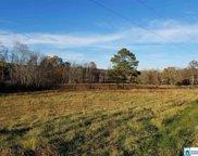 Poplar Springs Trl, Ashville image