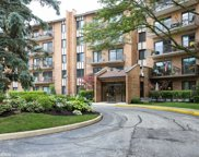 601 Lake Hinsdale Drive Unit 207, Willowbrook image