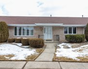 17841 Massachusetts Court Unit 45, Orland Park image