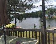 8340 Lake Nettie Road, Hawks image