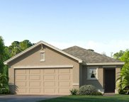11934 Downy Birch Drive, Riverview image
