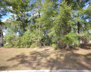 282 Hunter Oak Ct., Pawleys Island image