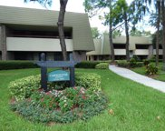 36750 Us Highway 19  N Unit 03117, Palm Harbor image