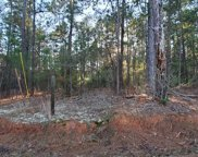 4110 Vern Sikking Road, Appling image