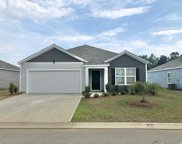 376 Spruce Pine Way, Conway image