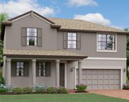 10635 Bahama Woodstar Court, Riverview image