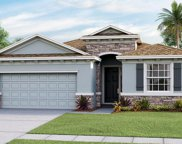 8341 Bower Bass Circle, Wesley Chapel image