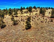 529 Goldenburg Canyon Road, Hartsel image