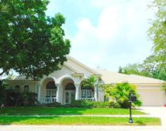 4062 Auston Way, Palm Harbor image
