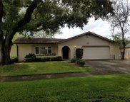 7731 Hinsdale Drive, Tampa image