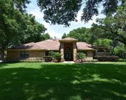 1429 Litchem Road, Apopka image