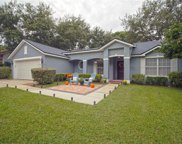 834 Elm Forest Drive, Minneola image