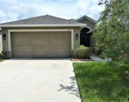 905 Peregrine Hill Place, Ruskin image
