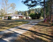 3925 Red Bluff Rd., Loris image