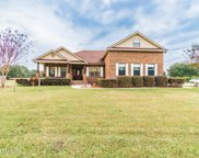 268 DECOY RD, Green Cove Springs image