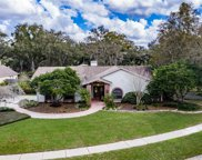 18301 Pleasant Ridge Place, Lutz image