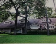 12203 Mossycup Drive, Houston image