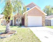 15803 Cottontail Place, Tampa image