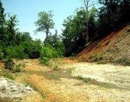 xxx Forest Park  Court Unit #3A, Pisgah Forest image