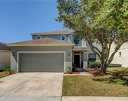 11234 Madison Park Drive, Tampa image