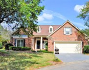 10505  Pullengreen Drive, Charlotte image