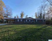 222 Old Solitude Road, Guntersville image