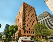 345 North Canal Street Unit 1608, Chicago image