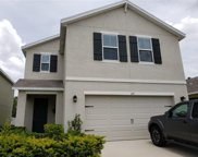 127 Lacewing Place, Valrico image