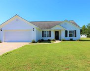 301 Wild Blueberry Ln., Conway image
