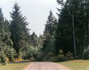 74 xx Steamboat Island Rd, Olympia image