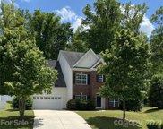 628 Ravenglass  Drive, Fort Mill image