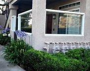 33     Leonado, Rancho Santa Margarita image