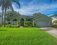 10206 Pointview Court, Orlando image