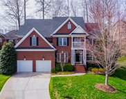 13708  Chandlers Green Court, Huntersville image