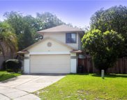 817 Reedy Cove, Casselberry image