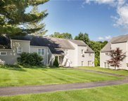 601 Holly Stream Court, Brewster image