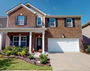1641 Frog Hollow Way, Wake Forest image