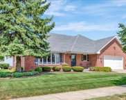 10702 Andrea Drive, Orland Park image