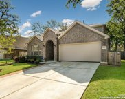 11432 Holly Frst, Schertz image