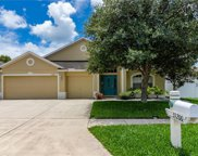 31200 Anniston Drive, Wesley Chapel image
